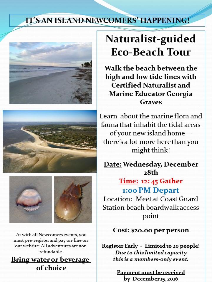 16-12-28-eco-beach-v1